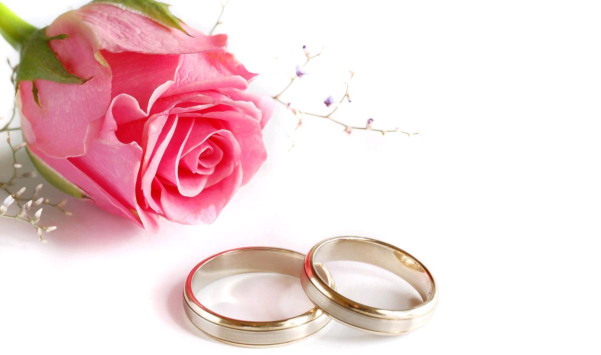 fiera sposi casa 2013 pavia